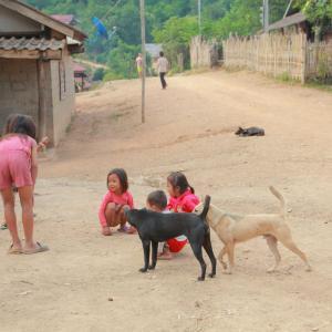 ラオス少数民族の村へ再訪 その1