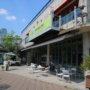 【大邱】カフェ文化の発祥地!人気いちごケーキと金光石通りで時間旅行