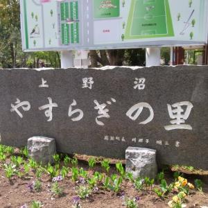 コテージでゆっくりBBQ!上野沼やすらぎの里@茨城