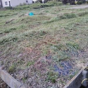 草刈り終わりフガフガ