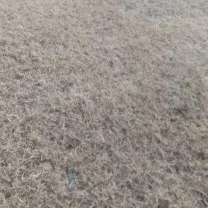 のんびり起きたら、草がたくさんあるよ。終わらない