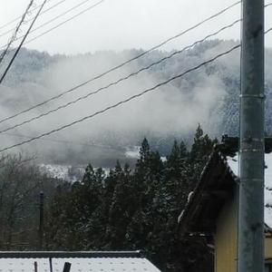 20.12.04...昨夜から雪が降り今日は雪景色です。