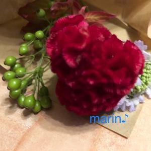 今週のお花の定期便♪