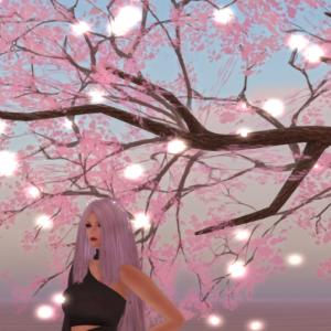 春が来た。桜咲く。