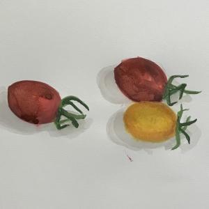 夏野菜を描く