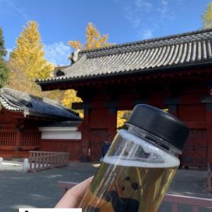 博論「台湾茶業史」と「東方美人茶」と