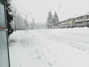 大雪と学校ストライキ
