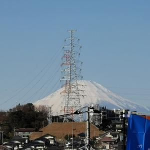 今日の富士山! / 新聞に隠れるかまってちゃん
