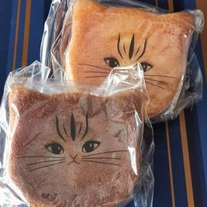 今日のおやつ♪ チーズケーキ専門店すずとら菓子工房「大人のにゃドレーヌ」