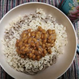 冷たい納豆そばの夕ご飯