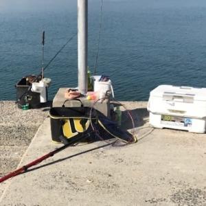 徒然釣り日記「柳井の波止でチヌ釣り」