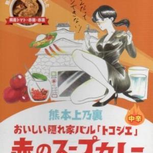 徒然カレー日記「熊本上乃裏おいしい隠れ家「トコシエ」赤のスープカレー」熊本県