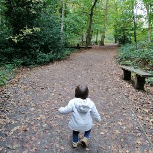 *森をお散歩*