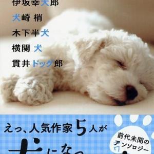 伊坂幸犬郎・犬崎梢・木下半犬・横関犬・貫井ドッグ郎「Wonderful Story」