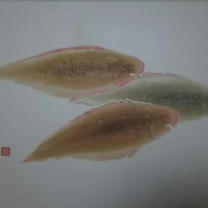 Bottom-シタビラメ-