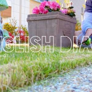 【英語3行日記】息子と芝刈り!お庭のお手入れ