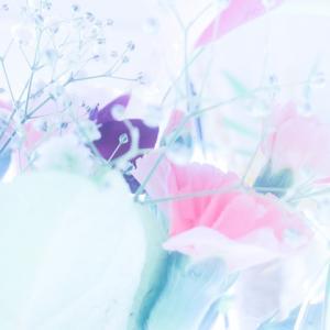 【英語3行日記】ねぇ、春はまだかしら?