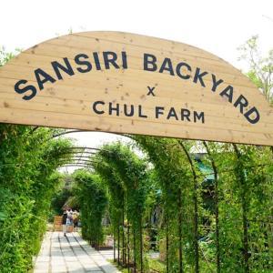 オーガニック農園&カフェ行ってみました!!Sansiri Backyard x Chul Farm @ T77 Community