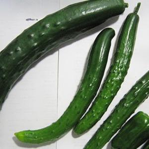 ベランダ野菜 今日の収穫 6月21日 2016 Today's harvest