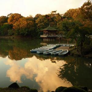 奈良公園(一里塚から浮見堂まで散歩)