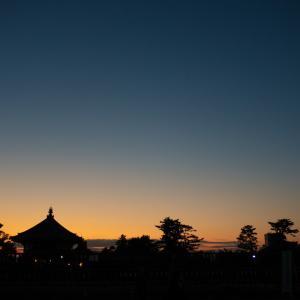 奈良公園(猿沢池~五重塔)