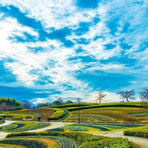 奈良県馬見丘陵公園