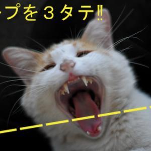 阪神 7-6 広島