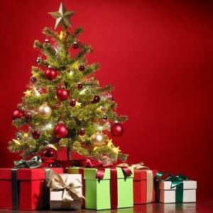 島暮らしの宿命!? クリスマスプレゼント選びに難航