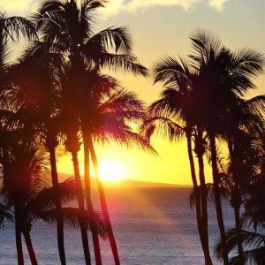 ここ最近、治安が気になるハワイ