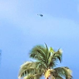 ハワイの上空から犯人捜索
