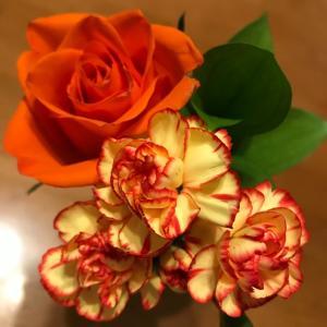 『Bloomee LIFE』母の誕生日にポストに届いたお花!