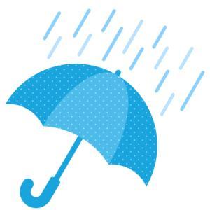 傘をささないアメリカ人!