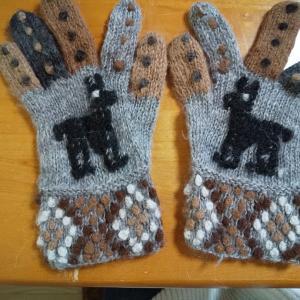アルパカの手袋はさぞ暖かいに違いない!