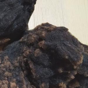 ふわふわの糸を紡ぐ工程
