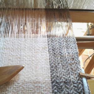 人気なヘリンボーン織りで織り始めました