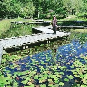 花紀行(?)2日目。水生植物園の花々。結局今回も那須行っちゃいました(^^;