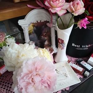 ルーシェ5回目の命日に咲いている薔薇達と人生、辛い事も楽しい事も色々です