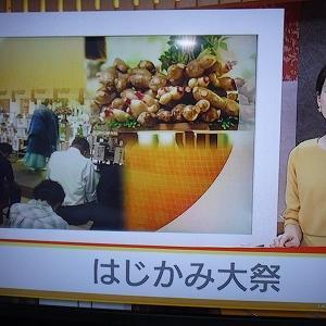 大祭がNHKのローカルニュースで紹介されました