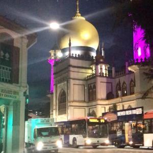 続・8時間だけのシンガポール