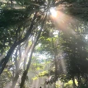 自分史からの開放 8/9 21:00〜