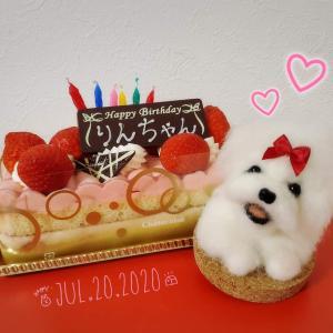7月20日…Happy Birthdayりんちゃん