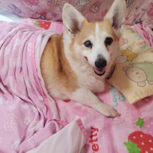 瑠姫(るき)【15歳2ヶ月6日】