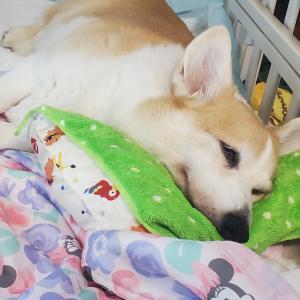 瑠姫(るき)【15歳2ヶ月11日】