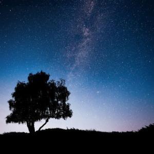 満月を利用して願望成就を早める方法とは?
