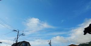 津島神社祭典