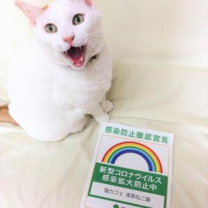 6月2日(水)から12:00~20:00時短営業再開決定!!(火曜日休園)