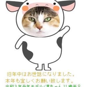 ★2021★あけましておめでとうございます!!