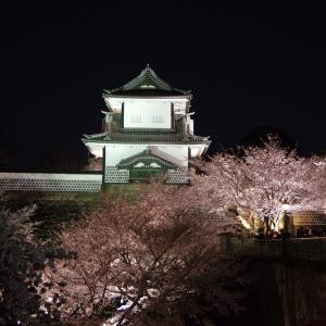 兼六園・金沢城「夜桜花見」ライトアップ2020年【石川門編】