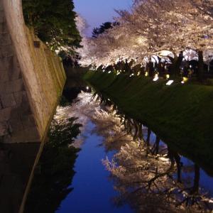 兼六園・金沢城「夜桜花見」ライトアップ2020年【リフレクション編】