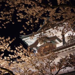 兼六園・金沢城「夜桜花見」ライトアップ2020年【金沢城編】